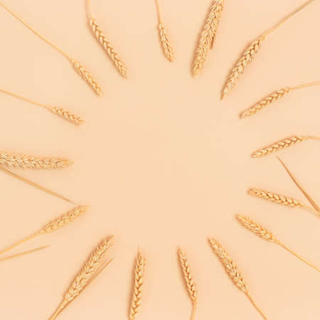 Wreath made of wheat spikelets on a beige background. Eco concept.