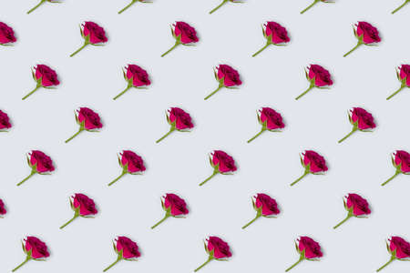 Rose flowers pattern on a blue pastel background. Floral creative flat lay.