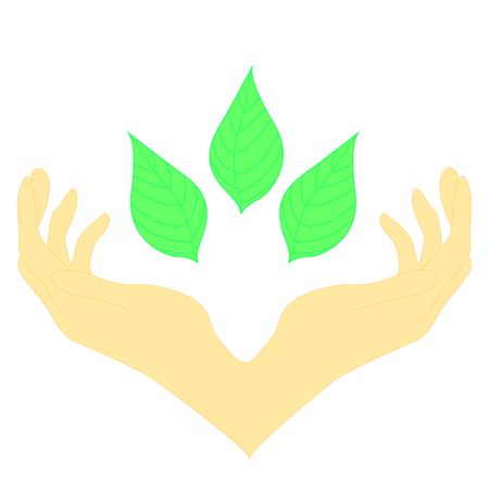 two hands surrounding green leaves. ?oncept of wellness, protecting nature, also represents concepts like environment protection, spa resorts.