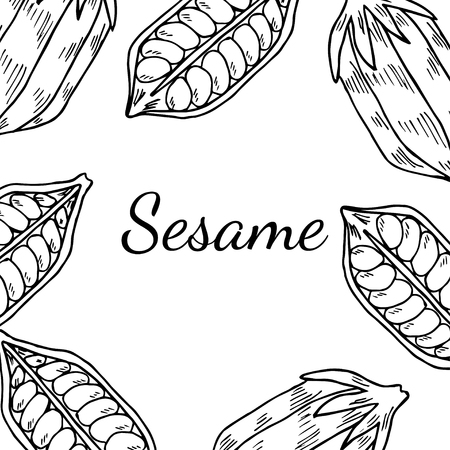 Sesame seed, natural organic butter ingredient. Treatment, care, food ingredient. Ink hand drawn sketch illustration. Square banner, card, template.