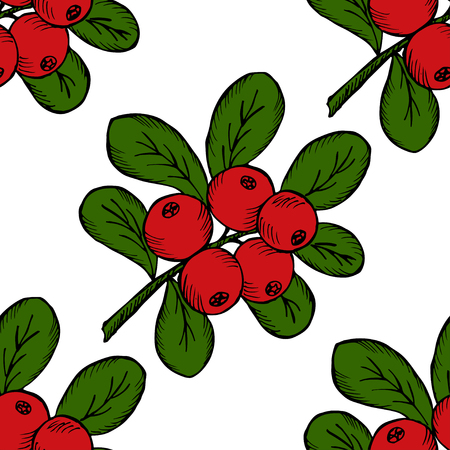 chicouté: ?owberry with leaves and branches.  Illustration doodle sketch hand-drawn bunch of ripened lingonberry. Seamless pattern. Vintage retro style. Ripe cranberry with leaves and branches.