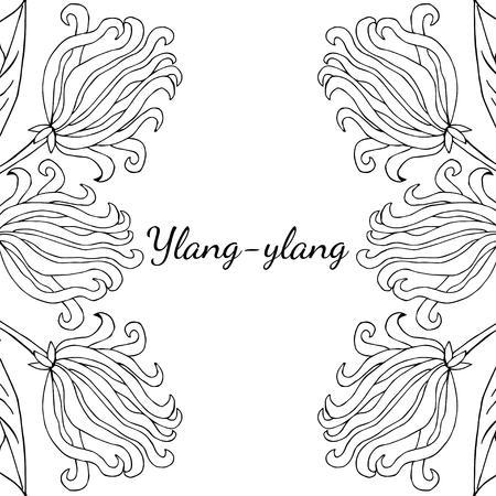 Color frame border template with ylang ylang sketch aromatherapy color frame border template with ylang ylang sketch aromatherapy series square maxwellsz