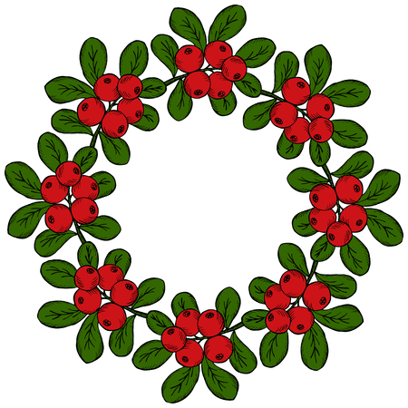 Cranberry (cowberry) branches frame, wreath, isolated on white background, with place for text. Illustration