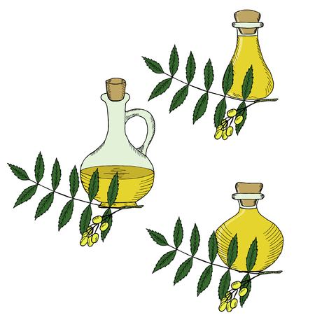 Ayurvedic herbs neem with oil bottles, jug. Set. Neem or nimtree, medicinal plant. Hand drawing ink illustration. Design for essential oil, natural cosmetics, treatment, aromatherapy, homeopathy.