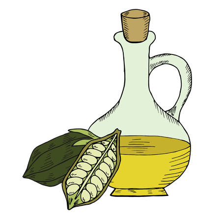 sesame: Sesame oil bottle. Illustration