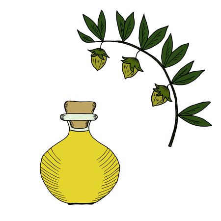 Jojoba oil bottle