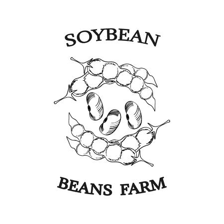 Soybean poster illustration.