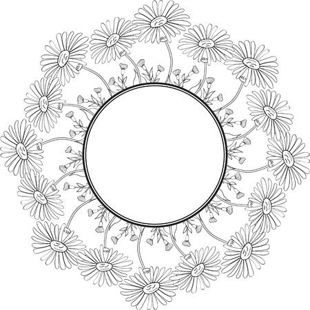 Arnica, round frame 1 illustration.
