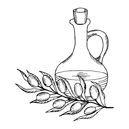 Olive oil jug, branch liner on white background, Vector illustration.