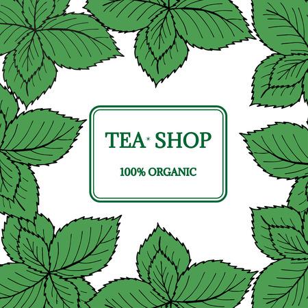 Mint liner in color, tea shop