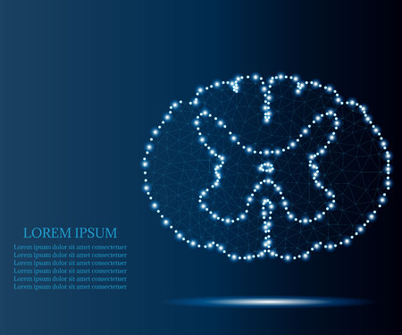 spinal cord polygon blue stars 1 Stock Illustratie