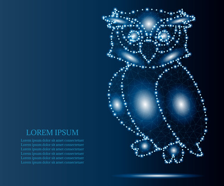 owl, polygon, blue stars 3 Illustration