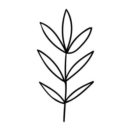 Leaf, set, scand, artbo 일러스트