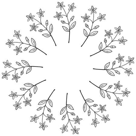 centaury frame border illustration