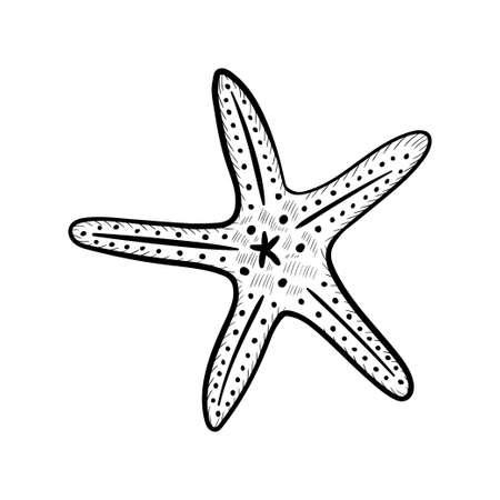 seashells, starfish set artbo