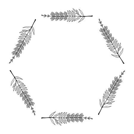 snapdragon frame border set