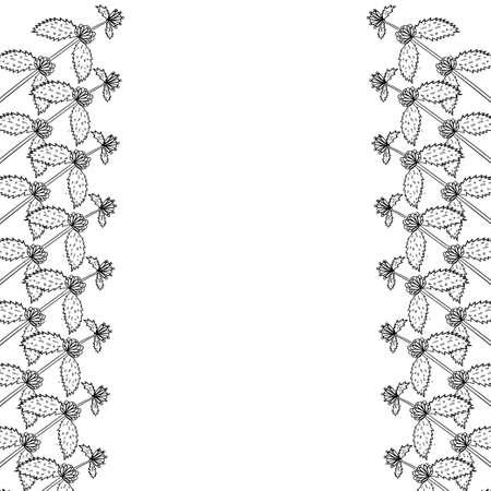 White horehound border frame
