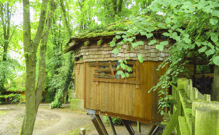Alnwick wooden Treehouse, green trees, Alnwick Garden,  in the English county of Northumberland, UK Stock Photo