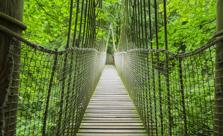 Alnwick wooden Treehouse, wooden and rope bridge, Alnwick Garden,  in the English county of Northumberland, UK 版權商用圖片