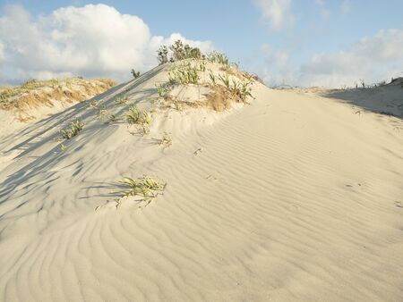 Sand Dunes early in the morning at Elafonisi Lagoon, Crete Island, Greece