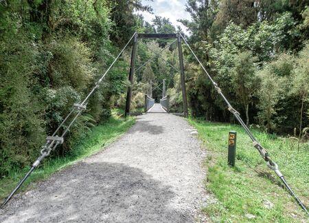 Suspended Bridge, Lake Matheson Track, New Zealand, South Island, NZ