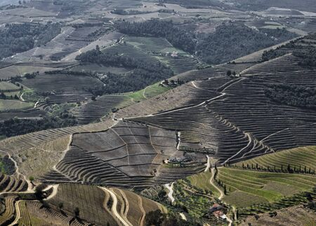Douro Valley, wineyard around the Douro River, Portugal