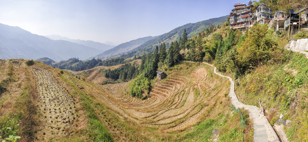 The scenery wavy Longsheng Rice Terraces after harvest - North Guillin, Guangxi Province, China 新聞圖片