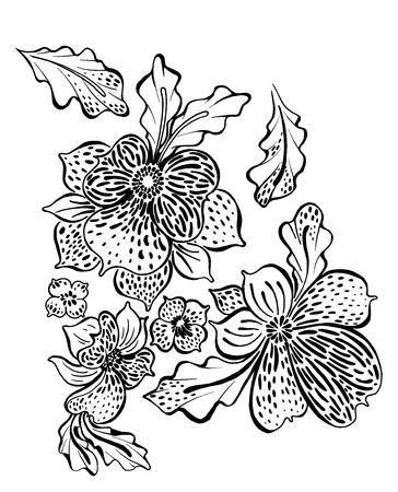 flores exoticas: dibujo de esquema de flores y hojas exóticas orquídeas Foto de archivo