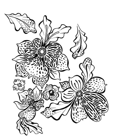 exotic flowers: outline drawing of exotic flowers orchids and leaves