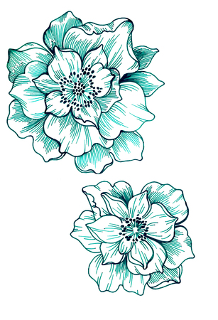 two green flowers drawn in outline