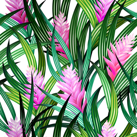 vibrance: amazing tropical design. Pink quill flowers with beautiful leaves in an allover design on white background.