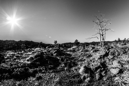 Black and white landscape photography; the desolate landscape and fascinating Etna; lavas shaped rope. Stock Photo
