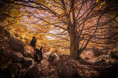 A dog and a photographer during an excursion on mountain in autumn. The great expression of the dog mean perseverance and resistence.