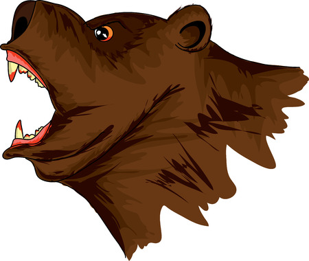 The head of the evil a roaring bear on a white background, illustration Illustration