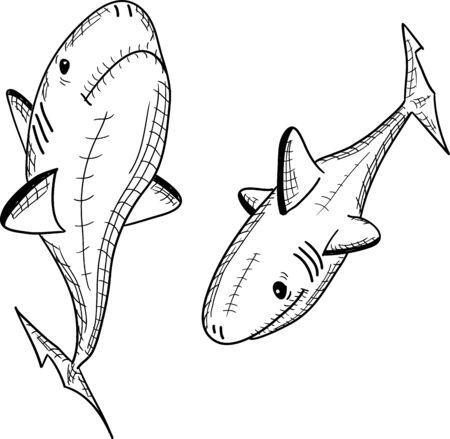 fish shark on a white background, vector