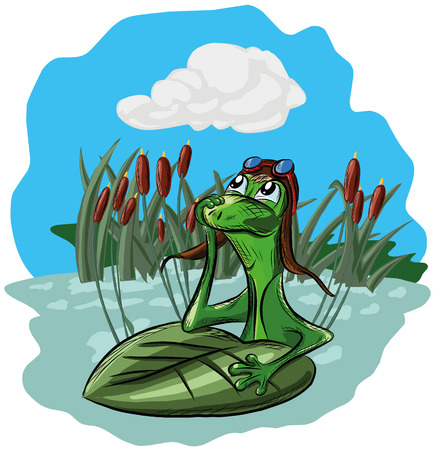 A frog sits in a swamp and dreams, looking at the sky