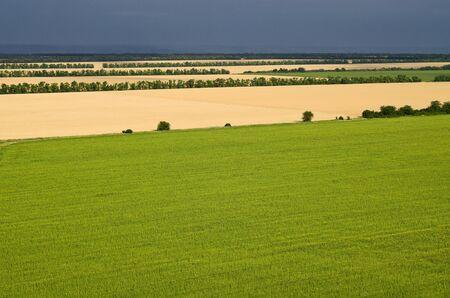 Heldere velden met verschillende gewassen op een achtergrond van een donkere stormachtige lucht, wateren van een hoogte Stockfoto