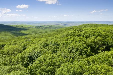 Mooie zomerse landschapsmening van grote hoogte