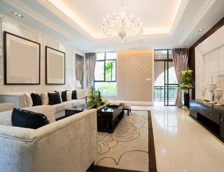 Luxus-Wohnzimmer mit schönen Dekoration Standard-Bild - 24225933