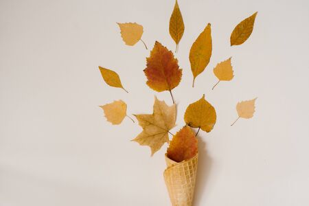 Autumn composition. Cone of waffle ice cream with dry yellowed and red leaves on beige background. Autumn background and concept. Creative layout