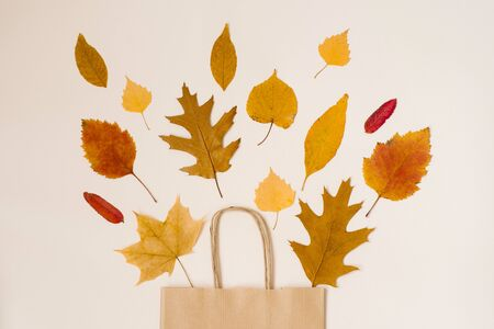 Autumn shopping with discounts. Autumn sales. Crafting beige paper shopping bag, from which look out autumn yellow leaves. Фото со стока