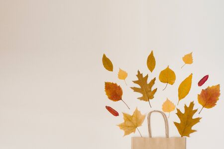 Shopping crafting paper bag with fallen leaves peeking out of it, isolated on beige background, autumn sales and discounts. Copy space