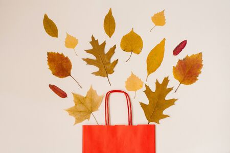 Autumn shopping with discounts. Autumn sales. A red paper shopping bag with autumn yellow leaves peeking out of it. Copy space. Foto de archivo - 129923983