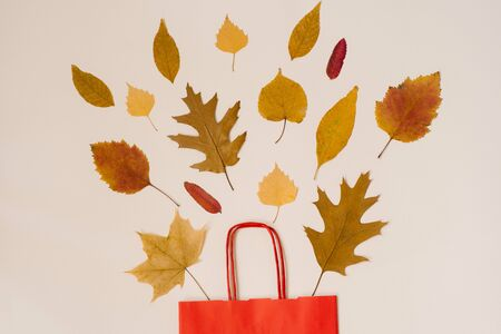 Autumn shopping with discounts. Autumn sales. A red paper shopping bag with autumn yellow leaves peeking out of it. Stock Photo