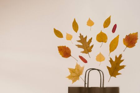 bright bouquet of autumn fallen leaves in a gift brown paper bag. Seasonal autumn sale. Copy space. Prices fall Foto de archivo - 129923986