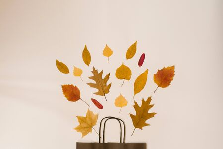 bright bouquet of autumn fallen leaves in a gift brown paper bag. Seasonal autumn sale. Copy space. Prices fall