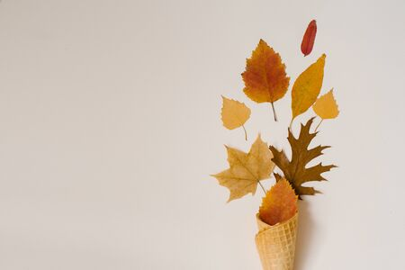 Autumn ice cream. Creative layout of autumn leaves. Yellow autumn fallen leaves in a waffle Cup on a beige background. Autumn season. Copy space 스톡 콘텐츠