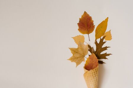 Autumn composition. Cone of waffle ice cream with dry yellowed and red leaves on beige background. Autumn background and concept. Creative layout. Copy space 写真素材