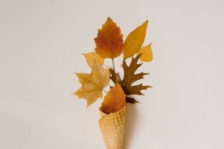 Autumn ice cream with fallen yellow leaves in a waffle Cup on a beige background. Autumn menu concept. Flat lay 写真素材
