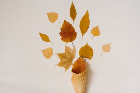 Autumn ice cream. Creative layout of autumn leaves. Yellow autumn fallen leaves in a waffle Cup on a beige background. Autumn season. Stock Photo